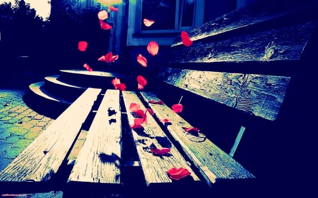 petals - touched